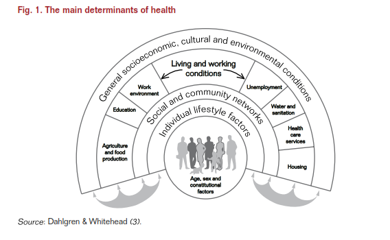 the main determinats of health